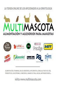 Multimascota