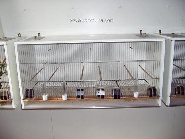 Como hacer una jaula de madera cool jaulin concurso for Bricolaje casero